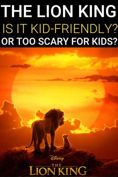Is The Lion King Kid Friendly? Not for Sensitive Children. Read my parent review on the violence and mature content in Disney's live-action remake of The Lion King. #TheLionKing Geek Meme, Scary Kids, Christian Films, Timon And Pumbaa, Adventure Time Finn, Le Roi Lion, Watch Cartoons, Live Action Movie, Cartoon Network Adventure Time