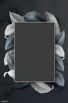 Rectangle foliage frame onblack background vector | premium image by rawpixel.com / wan Frame Background, Vector Background, Background Patterns, Flower Backgrounds, Black Backgrounds, Framed Wallpaper, Instagram Frame, Geometric Shapes, Abstract