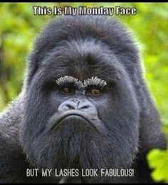 https://www.youniqueproducts.com/sashamartin   Younique - makeup - 3D fiber mascara - eyelashes - eyeliner - beYOUnique - gluten free - amazing lashes - party - home based business - quote - meme