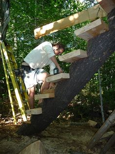 Sustainable Treehouse Design and Construction: http://www.yestermorrow.org/