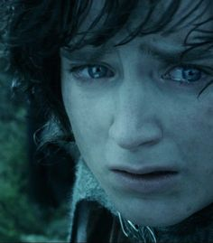 The expression on his face is heartbreaking. >>>The Ring will not save Gondor. It has only the power to destroy. Yes, I knew that. Don't judge.