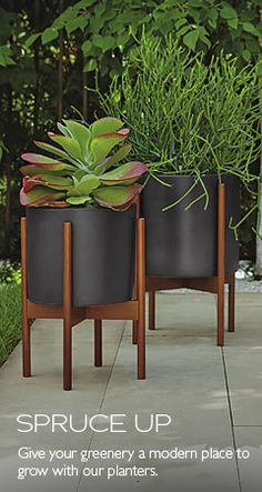 room board outdoor planters palm springs rentals pinterest rh pinterest com room and board modernica planter