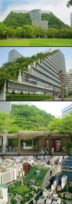 ACROS Building in Japan - The building features a step-up façade laced with more than plants. The roof is part of a huge 1 million square foot building that features office space, shops, theater and museum. An eco friendly green roof! Green Architecture, Futuristic Architecture, Sustainable Architecture, Beautiful Architecture, Sustainable Design, Landscape Architecture, Landscape Design, Architecture Design, Japan Architecture