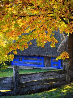 Autumn at the outdoor Museum of Folk Architecture and Life of Ukraine in Pirogov (by nekiy).