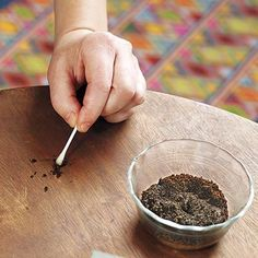 10 Uses for Coffee Grounds: Hide Furniture Scratches - Dip a cotton swab into steeped grounds and dab on scratches in dark wood furniture to minimize them. Just test in an inconspicuous area first. Diy Furniture Stain, Dark Wood Furniture, Furniture Scratches, Furniture Removal, Wood Scratches, Cheap Furniture, Painted Furniture, Furniture Ideas, Scratched Wood