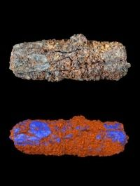 Iron in Egyptian relics came from space. The 5,000-year-old iron bead might not look like much, but it hides a spectacular past: researchers have found that an ancient Egyptian trinket is made from a meteorite.