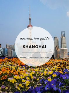 Destination Guide: Shanghai.  Planning travel to Shanghai, China? This city guide includes top attractions and things to do in Shanghai, including parks, museums, places to view the skyline, and restaurants to stop for food and drink.  #Shanghai #China #Asia #travel