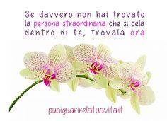 www.puoiguarirelatuavita.it