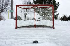 Hockey Net and Puck http://www.dennisflood.com/photos/get/2966/hockey_net_and_puck#