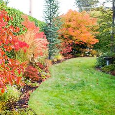Autumn is a great time to spruce up your lawn. Our easy guide shows you how./