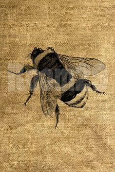 Big Bee Vintage Illustration - Download and Print - Image Transfer - Digital Sheet by Room29 - Sheet no. 413. $1.00 USD, via Etsy.