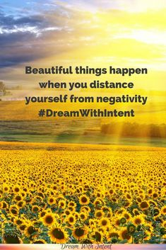 Don't miss out on the magnificent beauty this world has to offer. Push negativity away and see how your life starts to transform.