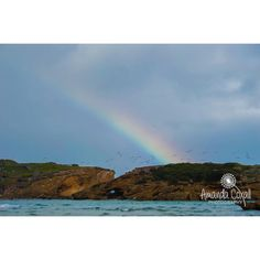 #middleisland #destinationwarrnambool #greatoceanroad #live3280 #happiness #life #rainbow #amazingaustralia #nature #beauty #birds #discover #travel #explore #tagsforlikes by amandacoxallphotography