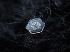 Old snowflake shots, - real snow crystals macro photography by Alexey Kljatov Close Up Photography, Types Of Photography, Snowflake Photography, Snowflake Pictures, Macro Photographers, Camera Rig, Macro And Micro, The Weather Channel, Light Painting