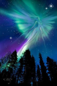 Boreal Angel All Nature, Science And Nature, Amazing Nature, Aurora Borealis, Northen Lights, Ciel Nocturne, Beautiful Sky, Beautiful Scenery, Beautiful Landscapes