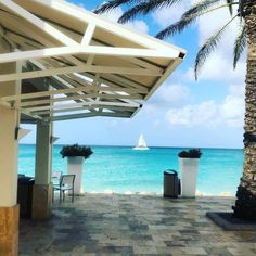 Aruba  ☀️☀️☀️☀️☀️ #aruba #onehappyisland #sailing #caribbean #vacation #beach #sunshine #caribbeansunshine #travel #resort #hotel #caribbeanlife #island Aruba Aruba, Fun Activities, Caribbean, Vacations, Sailing, Pergola, Sunshine, Outdoor Structures, Photo And Video