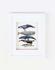 Matted 11x14 Watercolor Whale Stack Print by bunkerfish on Etsy