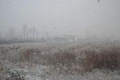 Powrót zimy :) / Winter's back :)  (Foto:M.Gajda)