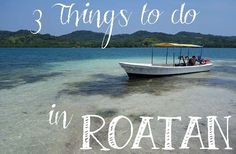 If you are looking for things to do in Roatan other than lying on the beach, try snorkeling or diving, and check out Gumbalimba Park or Cayos Cochinos. Roatan Island Honduras, Honduras Travel, Mexico Travel, Tegucigalpa, Western Caribbean Cruise, Cruise Destinations, Cruise Travel, Cozumel, Beautiful Places To Visit