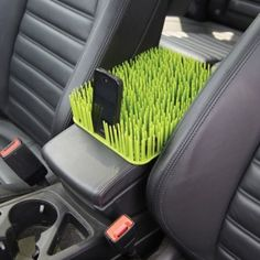 Auto Grass Center Console Dog Cover  keeps your dog in the backseat!      Yes?  No?