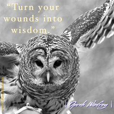 Oprah Winfrey Trauma Therapy, Hypnotherapy, Oprah Winfrey, Counseling, Perspective, Anxiety, Encouragement, Anxiety Awareness, Stress