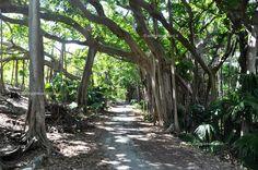 Angoli incantati lungo la South Shore Road, Isole Bermuda #viaggiaescopriBermuda #gotoBermuda http://www.viaggiaescopri.it/isole-bermuda-i-segreti-per-vivere-una-vacanza-low-cost/