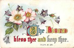 Bluebells Wild Roses on 1909 Religious Postcard with Bible Verse Church of God | eBay