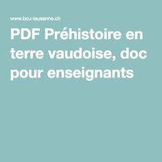 PDF Préhistoire en terre vaudoise, doc pour enseignants