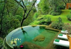 Hot tub seamlessly integrated with nature