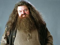 "I got Rubeus Hagrid! Can We Guess Your Favorite ""Harry Potter"" Character Based On Random Questions?"