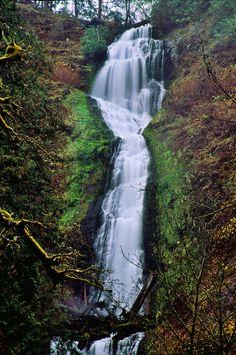 Love Letter To Oregon's Waterfalls   Travel Oregon