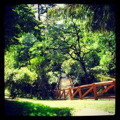 Parque del Retiro - Madrid