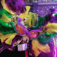 #mardigras #ButterflyDrop Clue #1 - Take a RIDE to Hall of Champions! #bethechange #ButterflyEffect #princessprojectsd