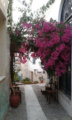 "See 116 photos and 14 tips from 912 visitors to Άνω Σύρος (Ano Syros). ""Beautiful little village on a hill top, no cars so come prepared"""
