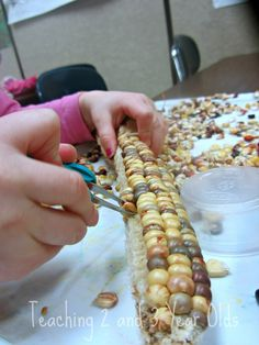 TWEEZING CORN This is a favorite fine motor activities in November. It can be a challenge to tweeze those little kernels off the cob, but oh so rewarding!