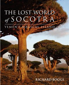 Island of Socotra Yemen  What a place !