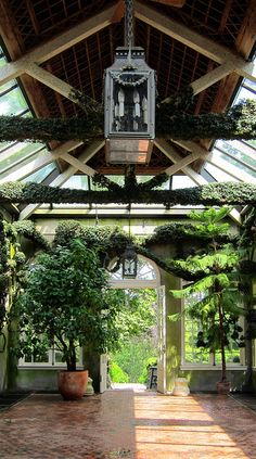 Solarium -- I like how the overhead lighting is indirect with the small central roof.  Diffuses the light a little bit.  Also, I like how the trusses are wrapped in ivy.
