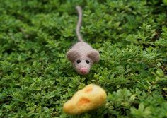 Tiny Mouse and Cheese Wedge - Needle Felted Wool by GoodNaturedByDani, $16.00