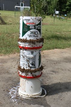 If you have several colonies of bees in your yard, feeding a weaker hive during a dearth can set off robbing - which can totally wipe out weaker hives. Bee Feeder, Feeding Bees, Bee Hive Plans, Honey Bee Hives, Honey Bees, Bee House, Bee Do, Backyard Beekeeping, Bees Knees