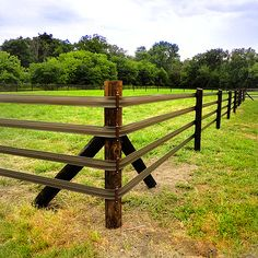 Electric Fence For Horse Pasture. Constructing The Right Electric Fence For Your Horses . How To Install An Electric Fence For Your Horse Animals .