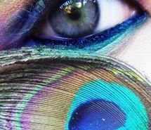 colorful, dramatic, eye, makeup, peacock feather