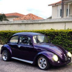 Purple VW '73
