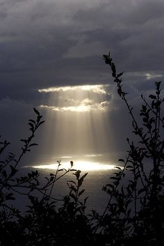 The place between sun and clouds, the dark and light, in nature or in life, makes magic manifest.