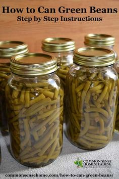 How to can green beans in a pressure canner Picking cleaning processing headspace processing times and altitude adjustments for safe canning Canning Beans, Canning Pickles, Canning Tips, Canning Green Beans Recipe, Pressure Canning Green Beans, Canning Potatoes, Canning Soup, Canning Peaches, Pressure Canning Recipes
