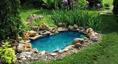 Blog de jardinería,huertos,diseño,ecología,siembra,árboles,patios,balcones. Cuidados generales del jardín. .