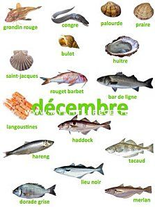 Poissons et crustacés de décembre Fruit In Season, Culinary Arts, Permaculture, Seafood Recipes, Healthy Life, Food And Drink, Healthy Recipes, Tables, Birds