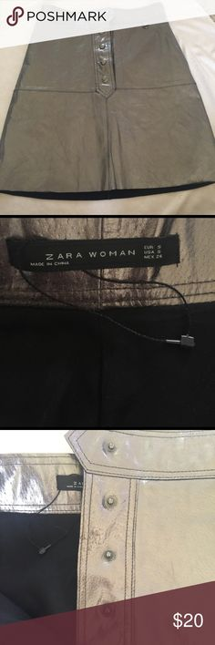 NWOT Zara 100% PigSkin Leather Skirt NWOT Zara 100% PigSkin Leather Skirt. With buttons to close and pleats in the back. It has a liner. The color varies between metallic gold, silver, and light brownish depending on the lighting. This is super cute!!! Zara Skirts