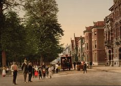 Maliebaan  Utrecht  Holland  1895
