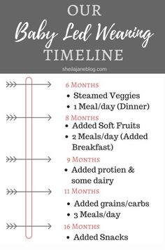 Thoughts on Baby Led Weaning 1.5 Years Later: Timeline
