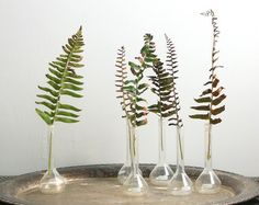 Wedding+Ideas:+simple-fern-wedding-reception-centerpieces